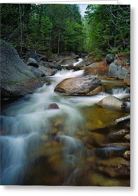 Waterfalls And Rocks On Abol Stream Greeting Card by Panoramic Images