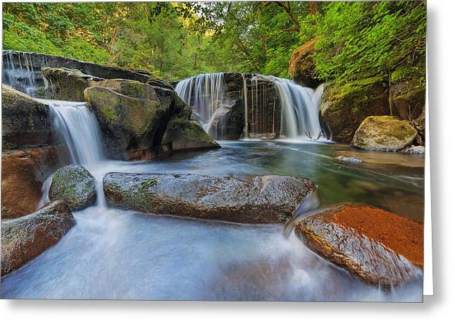 Waterfalls At Sweet Creek Falls Trail Greeting Card