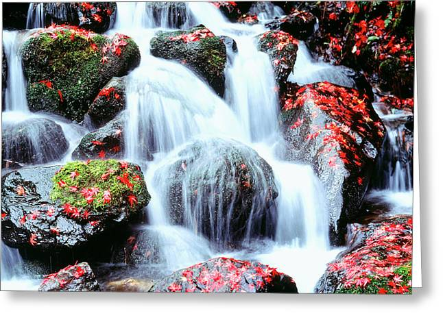 Waterfalls Kyoto Japan Greeting Card