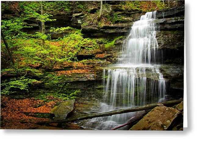 Waterfalls On Little Three Mile Run Greeting Card
