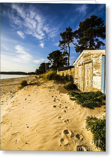 Waterfront Shed Greeting Card