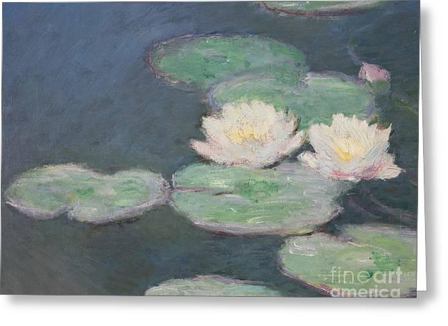 Waterlilies Greeting Card
