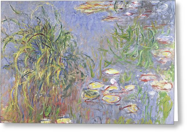 Waterlilies, Cluster Of Grass Greeting Card by Claude Monet