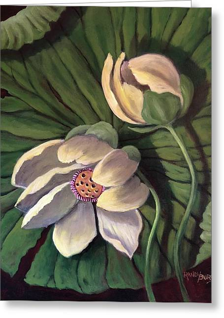 Waterlily Like A Clock Greeting Card
