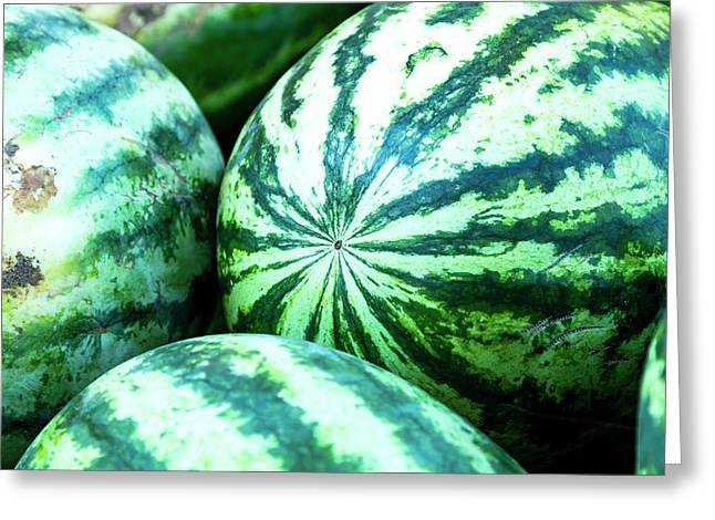 Watermelon Love Greeting Card by Teri Virbickis