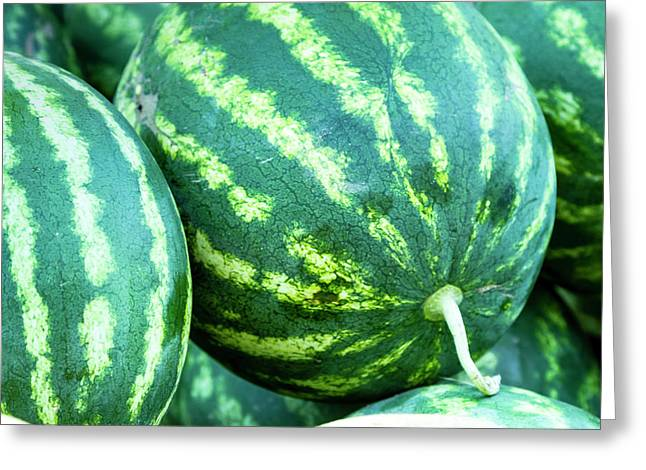 Watermelon Yum Greeting Card by Teri Virbickis