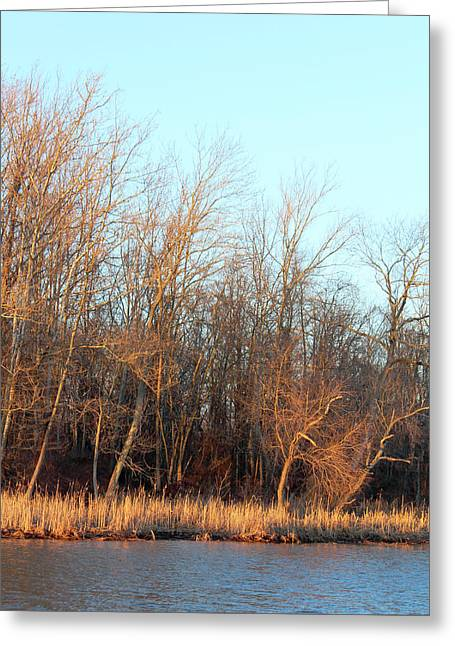 Greeting Card featuring the photograph Waters Edge 2 by Melinda Blackman