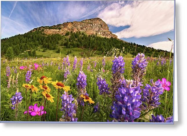 Waterton Wildflowers Greeting Card