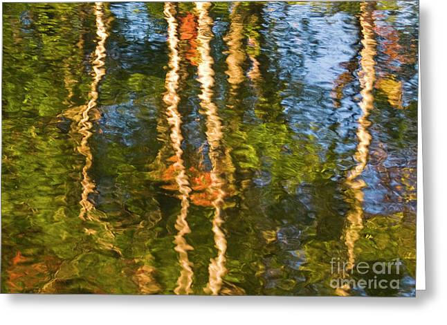 Greeting Card featuring the photograph Watery Dream Of Fall by Brenda Tharp