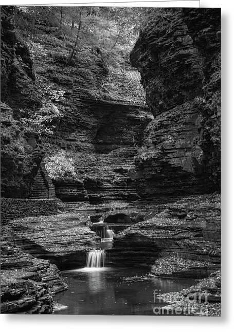 Watkins Glen Gorge Bw Greeting Card by Michael Ver Sprill
