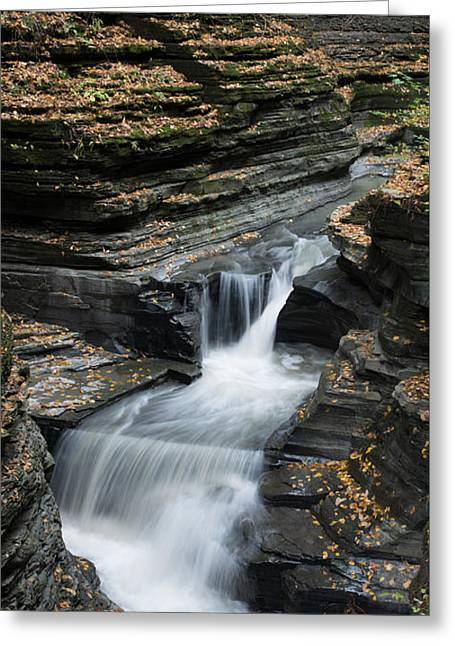 Greeting Card featuring the photograph Watkins Glen Rapids by Joshua House