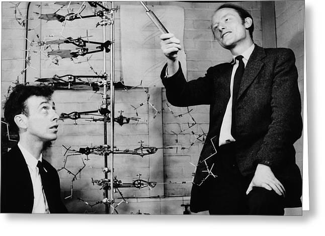 Watson And Crick Greeting Card