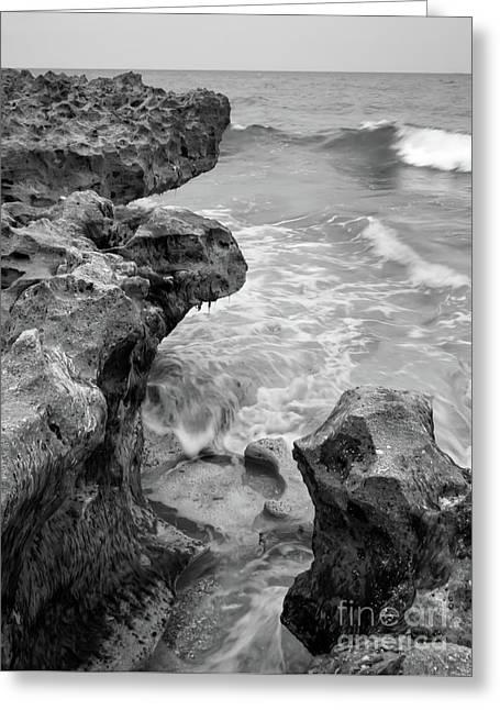 Waves And Coquina Rocks, Jupiter, Florida #39358-bw Greeting Card