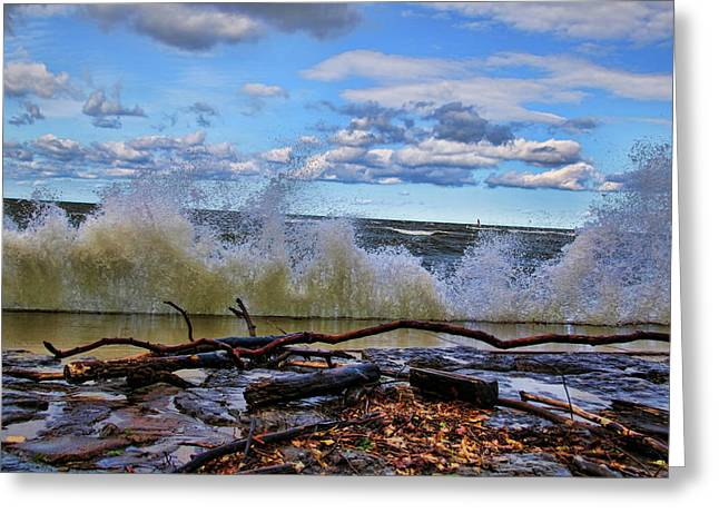 Waves And Wind On A Fall Day Greeting Card