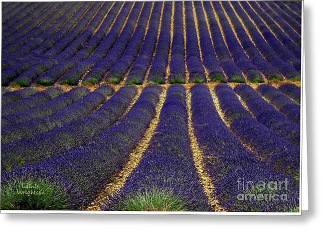 Waves Of Lavender Greeting Card