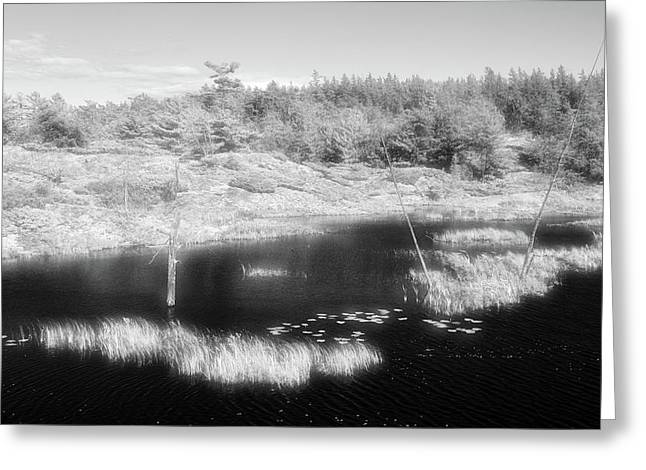 Waves On The Beaver Pond Bw  Greeting Card by Lyle Crump