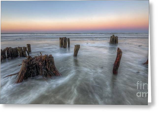 Waves Over Old Stumps Greeting Card by Twenty Two North Photography
