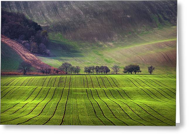 Wavy Hills  Greeting Card by Jenny Rainbow