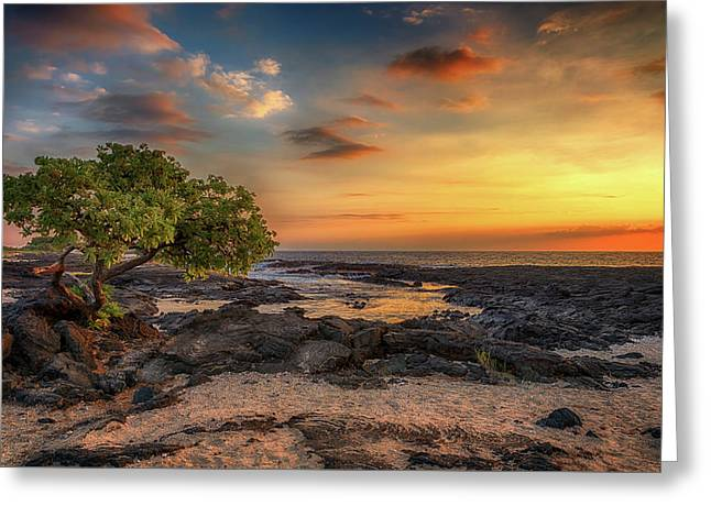 Greeting Card featuring the photograph Wawaloli Beach Sunset by Susan Rissi Tregoning