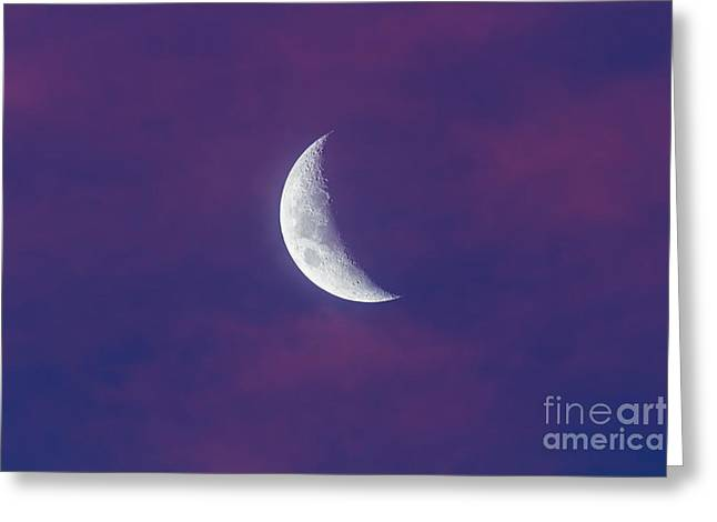 Waxing Moon In Pink Clouds Greeting Card by Alan Dyer