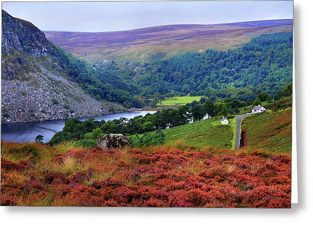 Greeting Card featuring the photograph Way Home. Wicklow. Ireland by Jenny Rainbow