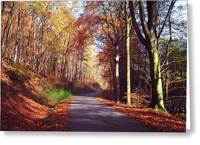 Way Through The Autumn Greeting Card by Jenny Rainbow