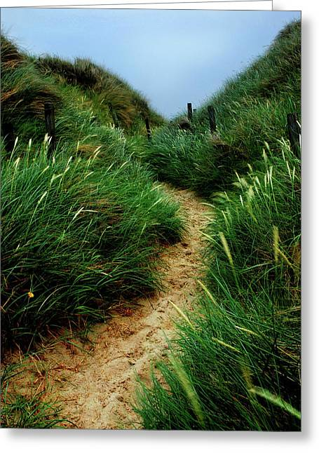 Way Through The Dunes Greeting Card by Hannes Cmarits
