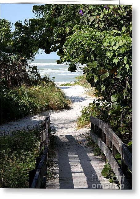 Way To The Beach Greeting Card by Christiane Schulze Art And Photography