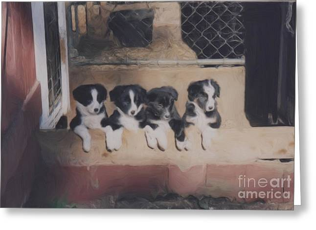 Way Too Cute Greeting Card by Smilin Eyes  Treasures