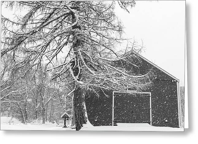 Wayside Inn Red Barn Covered In Snow Storm Reflection Black And White Greeting Card by Toby McGuire