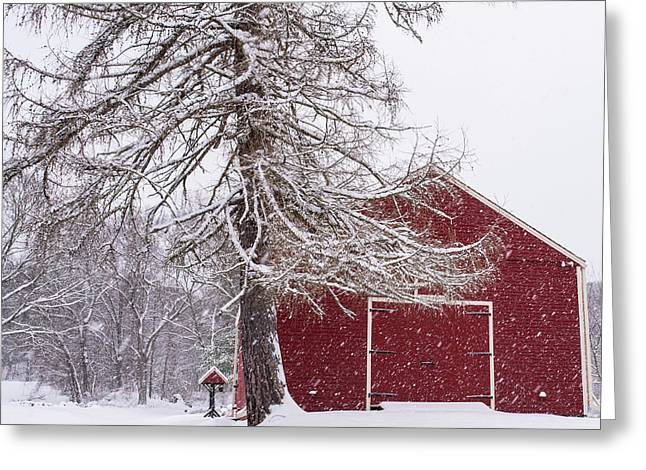 Wayside Inn Red Barn Covered In Snow Storm Reflection Greeting Card by Toby McGuire