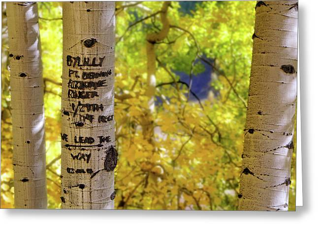 Greeting Card featuring the photograph We Lead The Way - Aspens - Colorado - Airborne Ranger by Jason Politte