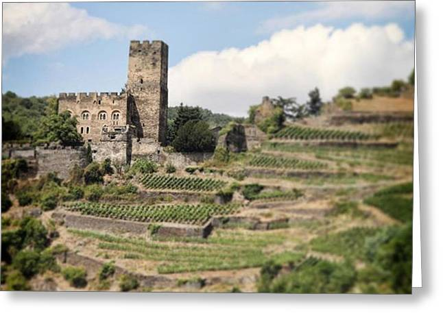 Rhine River Castle And Winery Greeting Card