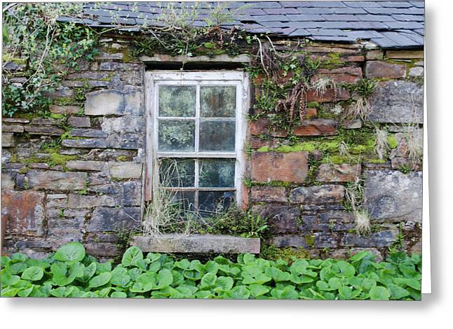 Weather Beaten Window On Donegal Cottage Greeting Card by Bill Cannon