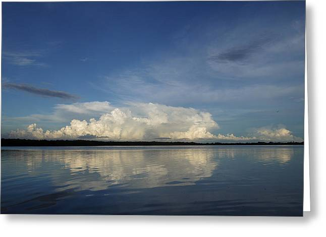 Weather From Tampa Bay 871 Greeting Card
