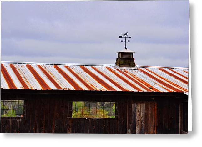 Weather Vane Greeting Card by JAMART Photography
