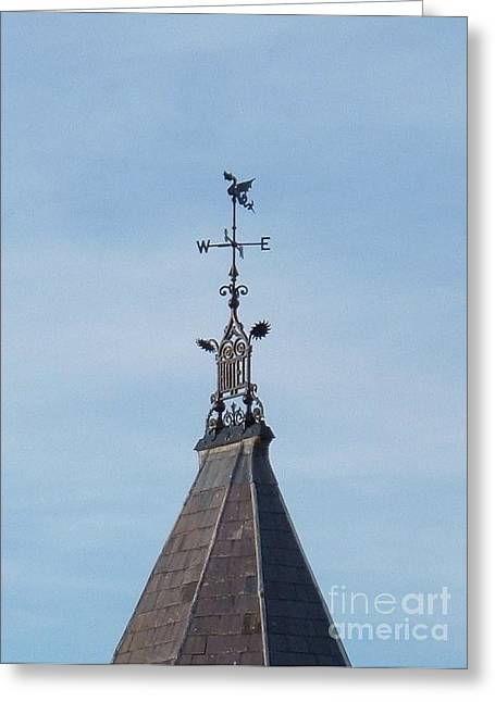 Weather Vane Greeting Card by Richard Brookes