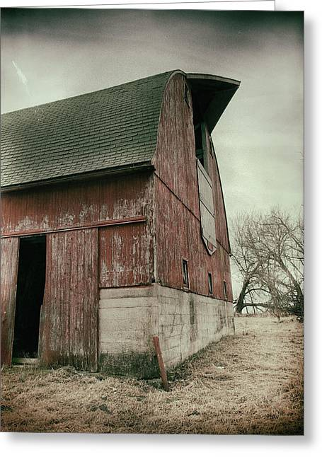 Weathered ... Greeting Card by Tom Druin