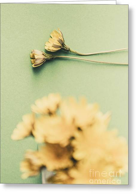 Weathered And Wilting Greeting Card by Jorgo Photography - Wall Art Gallery