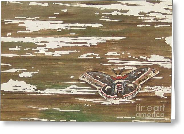 Weathered Greeting Card by Carla Dabney