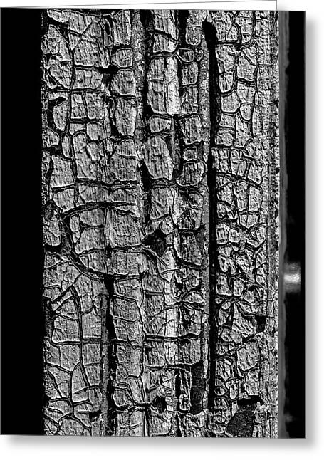 Weathered Paint Greeting Card by Robert Ullmann