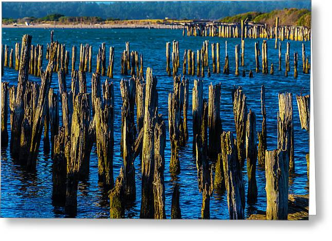 Weathered Pier Posts Greeting Card