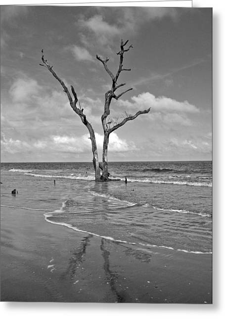 Weathering The Tide Greeting Card by Donnie Smith