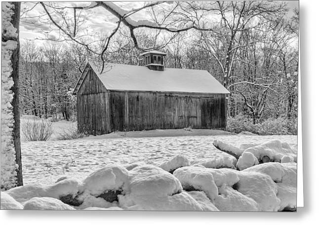 Weathering Winter Bw Greeting Card by Bill Wakeley