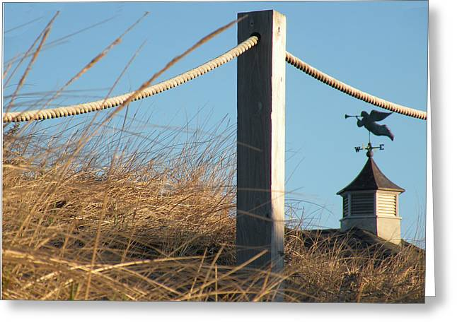 Weathervane Greeting Card by Donald Cameron