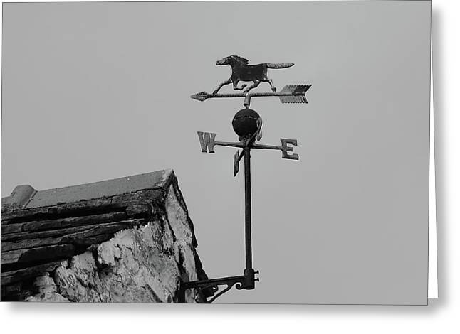 Weathervane Monochrome Greeting Card by Jeff Townsend