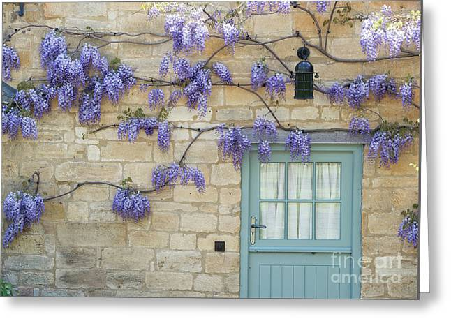 Weaving Wisteria Greeting Card by Tim Gainey