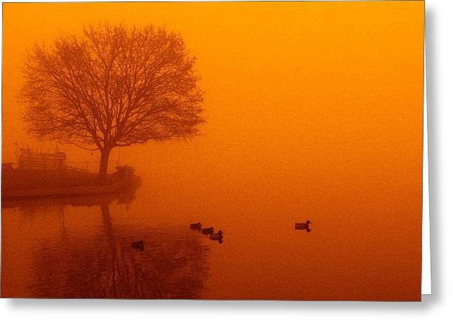 Webster Lake Sunrise Greeting Card by Michael L Kimble