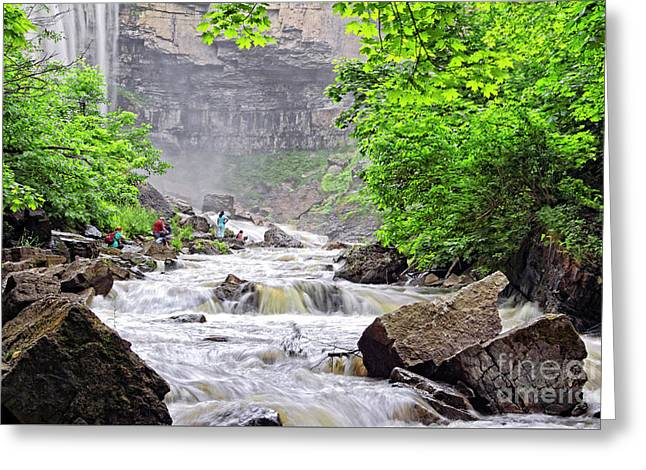 Webster's Falls In Hamitlon Greeting Card by Charline Xia