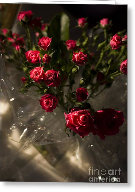 Wedding Roses Greeting Card